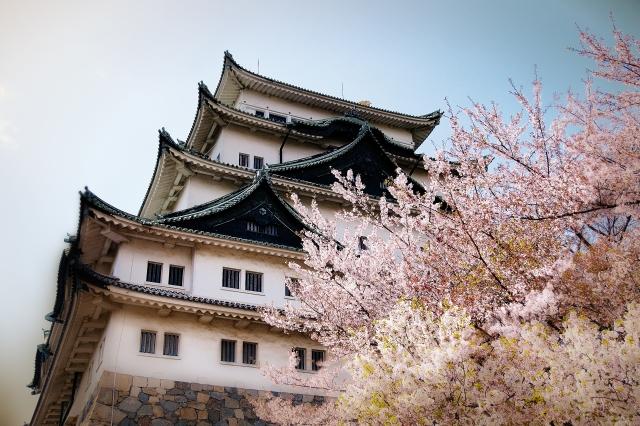 桜の名所は名古屋にはどんな所にあるのか?おススメしたいスポット