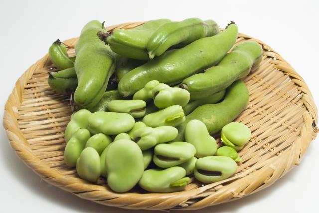 そら豆のレシピ☆人気があるのはどんなもの?レパートリーはある?