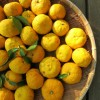 ゆず大根の漬物☆カロリーは高い?作り方やアレンジ方法は?