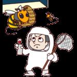 害虫駆除の業者☆評判でチェックすべきポイントとは?どこが人気?